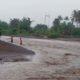 Situasi pasca banjir melanda di Dusun Kebunrejo, RT 01, 02, dan 03, RW 03, Desa Alasrejo, Kecamatan Wongsorejo, Sabtu (07/03/2020) siang. (ist)