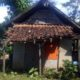 Kondisi rumah Imran warga dusun Krajan Geluduk, Desa Wongsorejo, Kecamatan Wongsorejo yang sangat memprihatikan. (kur)