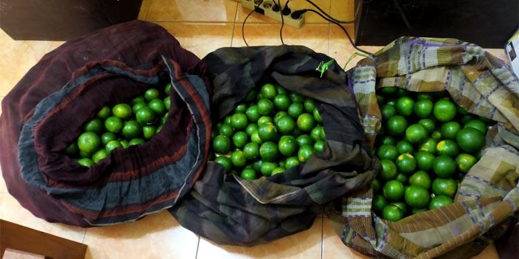 barang bukti buah jeruk yang dibungkus tiga kain sarung bermotif kotak-kotak (ist)